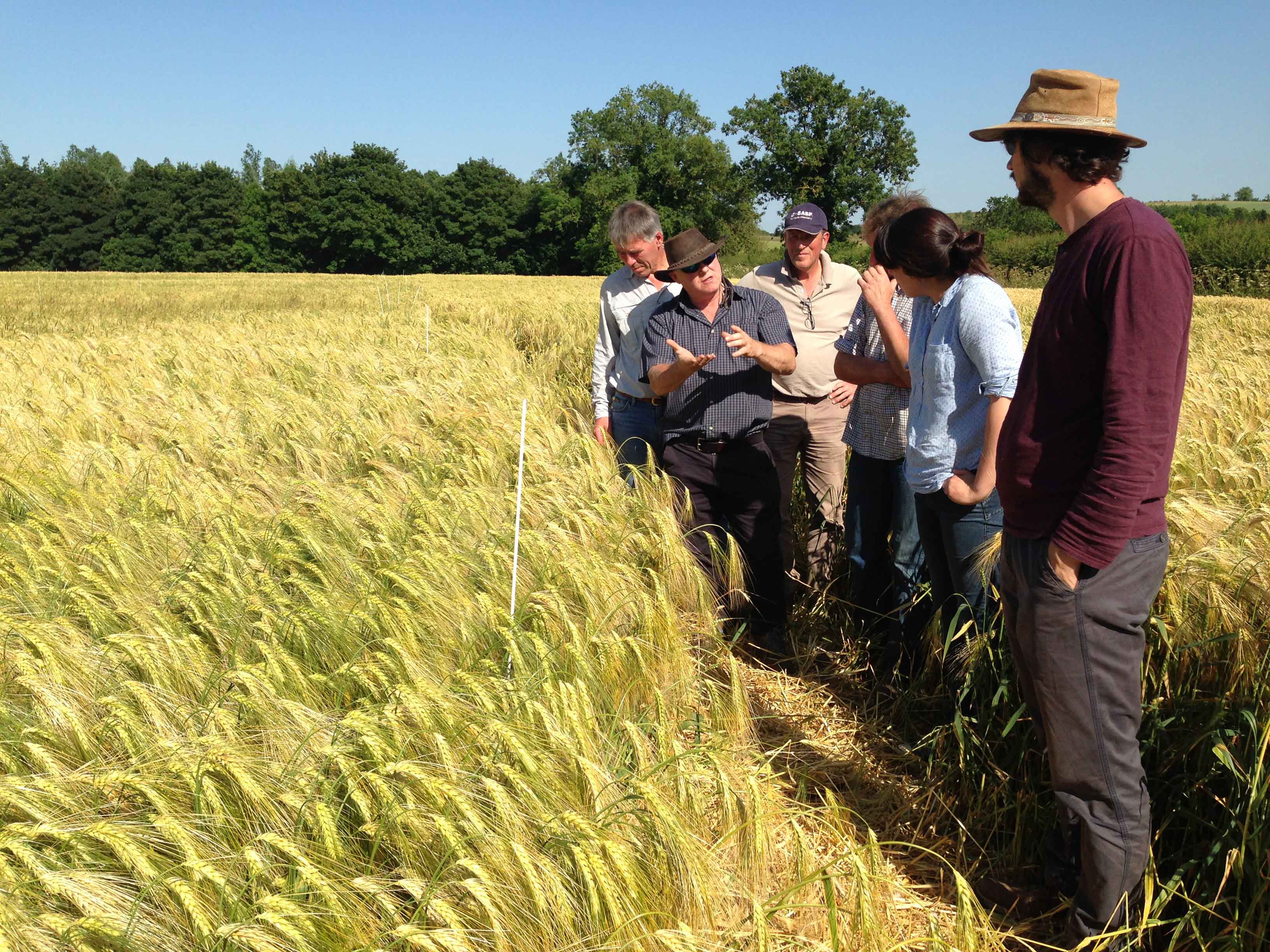 Discussing compaction alleviation experimentLowRes