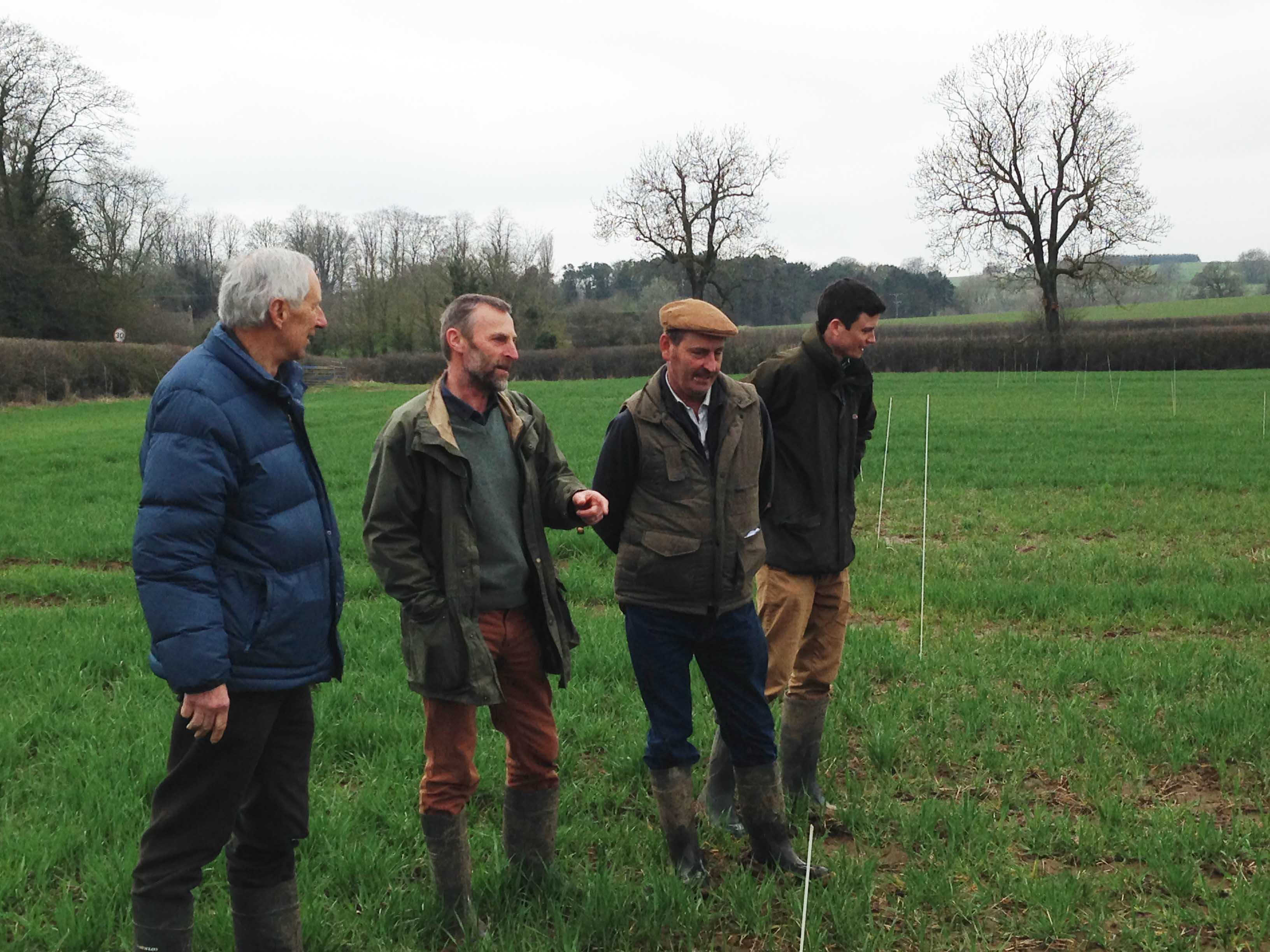 Local farmers visiting the compaction alleviation experimentLowRes