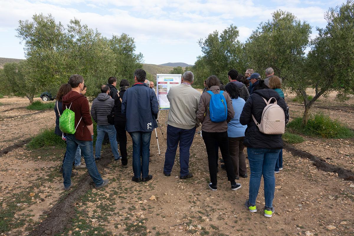Helyszíni látogatás a talajgondozásban Almeria 04 2019
