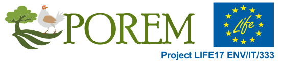 logo kompl