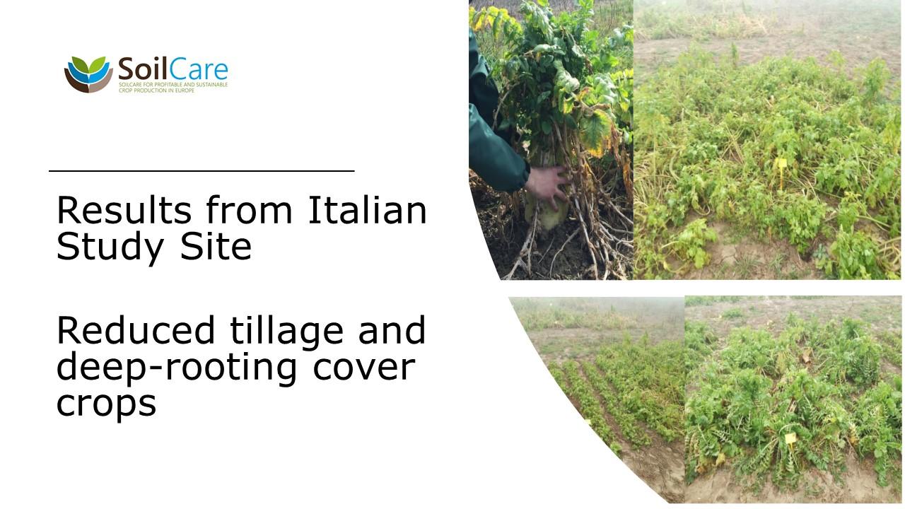 Slide de capa do vídeo SoilCare Itália
